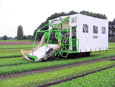 Farm Equipment And Vegetable Harvesters Including Parsnip